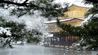 Зима в парке Киото, Япония