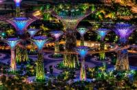 Парк «Сады у залива» в Сингапуре