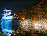 Toyama Castle, Japan