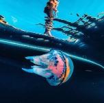 Сolorful jellyfish