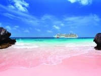 Розовый пляж на Бермудах
