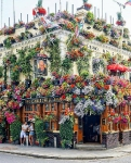 Flowery architecture of Churchill Arms, London, United Kingdom